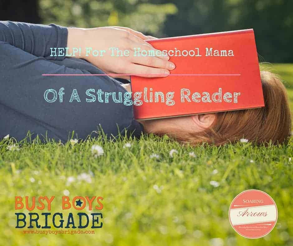 Help! for the Homeschool Momma of a Struggling Reader by Melissa of Soaring Arrows is part of 20 Days of Homeschooling Encouragement Blog Party. Find great tips & support for how to effectively handle homeschool when you have a reader who struggles.