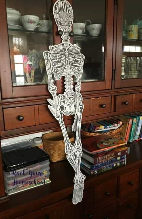 STEM-Based learning fun is possible with cool activities like this skeleton from Know Yourself Adventure Series.