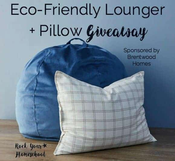 Enter this giveaway for an Eco-Friendly Lounger + Pillow from Brentwood Homes. Wonderful ways to create a relaxed learning atmosphere in your homeschool!