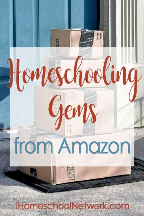 Learn how to effectively use Amazon Prime Video in your homeschool plus get great ideas from other homeschool bloggers at iHomeschool Network.